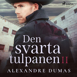 Dumas, Alexandre - Den svarta tulpanen II, audiobook