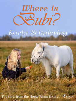 Schniering, Karla - The Girls from the Horse Farm 2: Where is Bubi?, ebook
