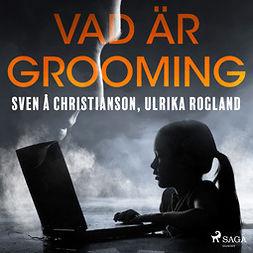 Christianson, Sven Å - Vad är grooming, audiobook