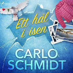 Schmidt, Carlo - Ett hål i isen, audiobook
