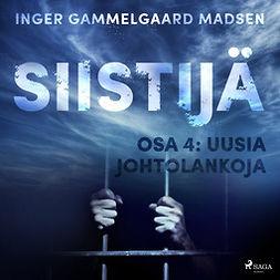 Madsen, Inger Gammelgaard - Siistijä 4: Uusia johtolankoja, äänikirja
