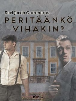 Gummerus, Karl Jacob - Peritäänkö vihakin?, e-kirja