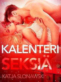 Slonawski, Katja - Kalenteriseksiä, ebook