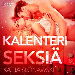 Slonawski, Katja - Kalenteriseksiä - eroottinen novelli, äänikirja