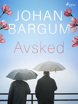 Bargum, Johan - Avsked, ebook