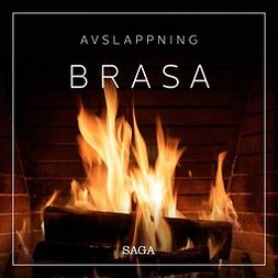 Broe, Rasmus - Avslappning - Brasa, äänikirja