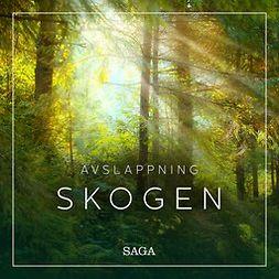 Broe, Rasmus - Avslappning - Skogen, äänikirja