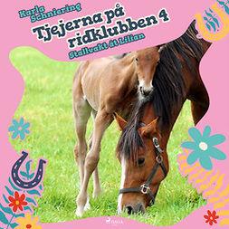 Schniering, Karla - Tjejerna på ridklubben 4 - Stallvakt åt Lilian, audiobook