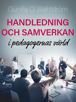 - Handledning och samverkan i pedagogernas värld, ebook