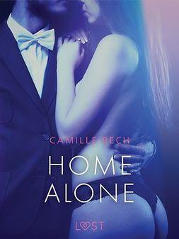Bech, Camille - Home Alone - Erotic Short Story, e-kirja