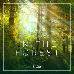 Ambience - In the Forest