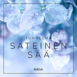 Broe, Rasmus - Tunnelma - Sateinen sää, äänikirja