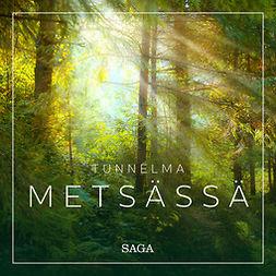 Broe, Rasmus - Tunnelma - Metsässä, äänikirja