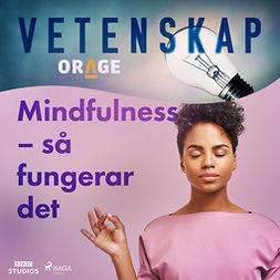 Orage, - - Mindfulness - så fungerar det, audiobook