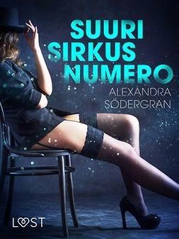 Södergran, Alexandra - Suuri sirkusnumero - eroottinen novelli, e-kirja