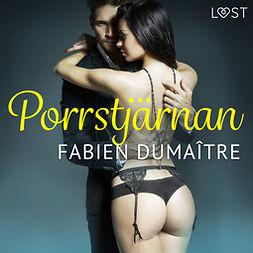 Dumaître, Fabien - Porrstjärnan - erotisk novell, audiobook