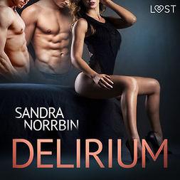 Norrbin, Sandra - Delirium - eroottinen novelli, äänikirja