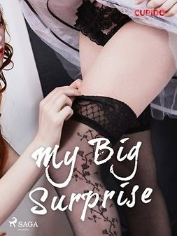Cupido - My Big Surprise, ebook
