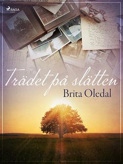 Oledal, Brita - Trädet på slätten, ebook