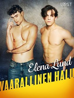 Lund, Elena - Vaarallinen halu - eroottinen novelli, ebook