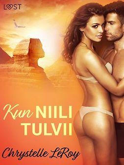 Leroy, Chrystelle - Kun Niili tulvii - eroottinen novelli, e-kirja
