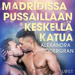 Södergran, Alexandra - Madridissa pussaillaan keskellä katua - eroottinen novelli, äänikirja