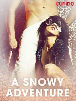- A Snowy Adventure, ebook