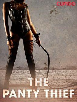 - The Panty Thief, ebook