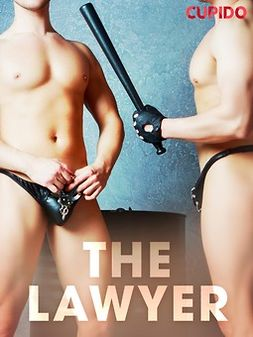 - The Lawyer, ebook