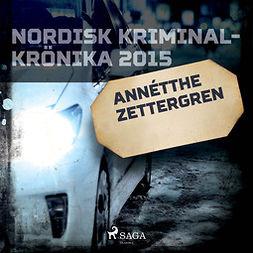 Työryhmä - Annétthe Zettergren, audiobook