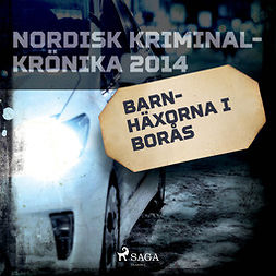 Työryhmä - Barnhäxorna i Borås, audiobook