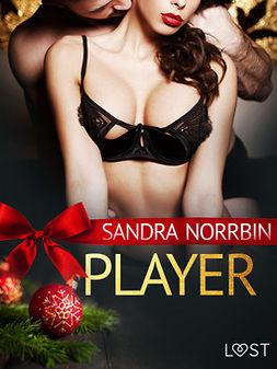 Norrbin, Sandra - Player - an erotic Christmas story, ebook