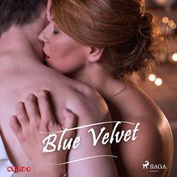 Sabine - Blue Velvet, audiobook