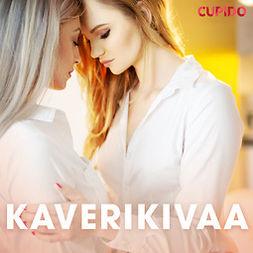 Mantere, Elise - Kaverikivaa, äänikirja