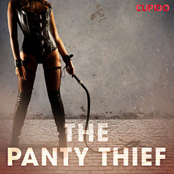 Anderson, Alessandra - The Panty Thief, audiobook