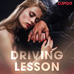Able, Julie - Driving Lesson, audiobook