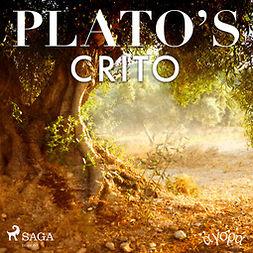 Plato - Plato's Crito, audiobook