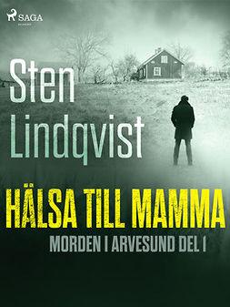 Lindqvist, Sten - Hälsa till mamma, ebook