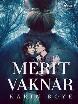 Boye, Karin - Merit vaknar, ebook
