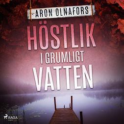 Olnafors, Aron - Höstlik i grumligt vatten, audiobook