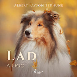 Terhune, Albert Payson - Lad: A Dog, audiobook