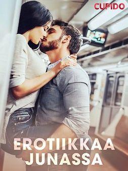 Cupido - Erotiikkaa junassa, e-kirja