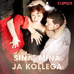 Cupido - Sinä, minä ja kollega, äänikirja