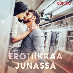 Cupido - Erotiikkaa junassa, äänikirja