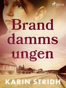 Stridh, Karin - Branddammsungen, ebook