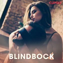 Frid, Vilda - Blindbock, audiobook