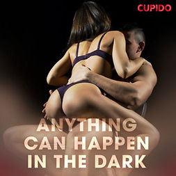 Anderson, Alessandra - Anything Can Happen in the Dark, audiobook