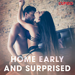 Anderson, Alessandra - Home Early and Surprised, audiobook