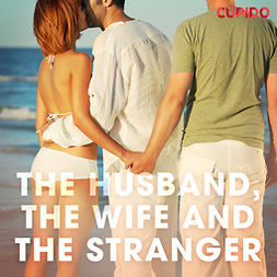 Anderson, Alessandra - The Husband, the Wife and the Stranger, audiobook