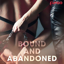 Anderson, Alessandra - Bound and Abandoned, audiobook